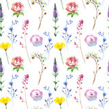 Painted wildflower flowers background pattern in a watercolor style. Royalty Free Stock Photography