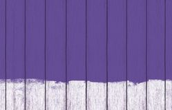 Painted wood background wallpaper with purple paint. Printable digital Paper fit for any projects and layout royalty free stock photo
