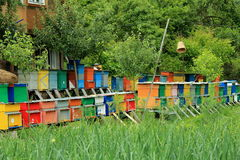 Painted wooden beehives Stock Photos