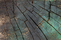Painted wooden block texture - green and dark. Part of a wooden pallet, this block showcases weathered wood textures and unorthodox coloring royalty free stock photos