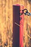 Painted wooden post in a field. Closeup of a red painted wooden post in a field with golden plants Stock Images