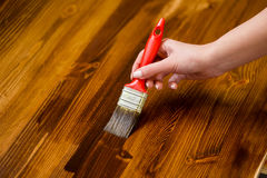 Painted wooden surface. Varnishind natural wood with paint brush Royalty Free Stock Photo