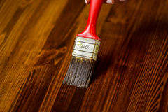 Painted wooden surface. Varnishind natural wood with paint brush Stock Photography