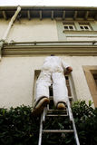 Painter. Worm's eye view of a painter and decorator working Royalty Free Stock Photos