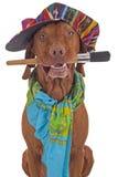 Painter artist dog Royalty Free Stock Photo