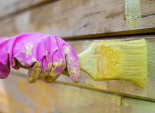 Painter`s hand in glove with brush. background, work. Stock Photo