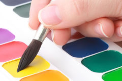 Painter taking water-colour paint by paintbrush Royalty Free Stock Photos