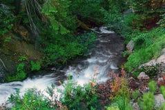 Painterly изображение холодного потока горы стоковые изображения