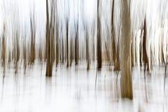 Painterly skog Arkivfoto