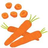 Painterly uppsättning för vektor av hela morötter, rått och skivat ny veg stock illustrationer