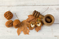 Painterly walnuts on grunge backdrop Stock Image