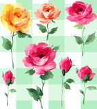Painterly watercolor Rose blossom Flowers pattern. Elegant Rose wall paper original art watercolor painting on a green plaid background Stock Images
