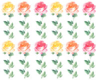 Painterly watercolor Rose blossom Flowers stripe repeat pattern Stock Photography