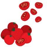 Painterly wektorowy ustawiający czereśniowi pomidory, surowy i pokrojony, ilustracja wektor