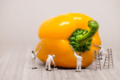 Painters coloring bell pepper. Macro photo Royalty Free Stock Image