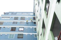 Painters hanging on roll, painting color on building wall. Young painting facade builder worker with roller brush, working on high building, working together royalty free stock photography