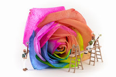 Painters. Miniature painters color multicolor rose Stock Photography