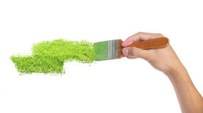 Painting. White wall with vibrant green color Royalty Free Stock Photo