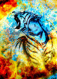 Painting abstract tiger collage on color abstract  background,  rust structure, wildlife animals. Stock Photography