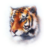 Painting abstract tiger collage , wildlife animals. Painting abstract tiger collage , wildlife animals royalty free illustration