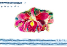 Painting art watercolor pink color of orchid flower with postcard Stock Images