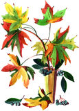 Painting autumn leaves Stock Photo