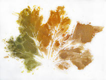 Painting of Autumnal Maple Leaf silhouette Royalty Free Stock Images