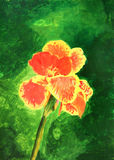 Painting of beautiful orange yellow canna lily Royalty Free Stock Images