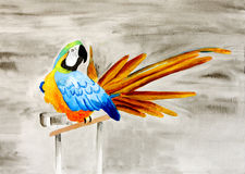 Painting of a beautiful parrot Stock Photos