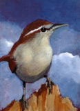 Painting of Bewick's Wren in Acrylic. My painting of a Bewick's wren perched on a piece of wood Royalty Free Stock Photo