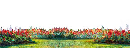 Painting big grass border isolated in white background. Painting landscape oil color on canvas of Salvia flowers and big grass border isolated in white vector illustration
