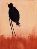 Painting of a of bird. This is an abstract painting of bird Royalty Free Stock Photography