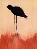 Painting of a of bird. This is an abstract painting of bird Stock Photos