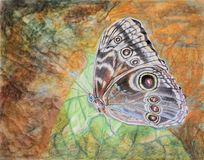 Painting of blue Morpho butterfly (underside) Royalty Free Stock Photo