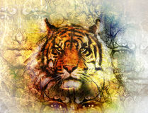Painting of a bright mighty tiger head on ornamental background and mystic face, collage. Stock Images