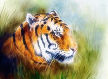 Painting of a bright mighty tiger head on a soft toned abstract. Beautiful airbrush painting of a mighty fierce tiger head on a soft toned abstract gres stock illustration