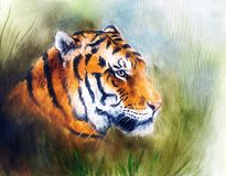 Painting of a bright mighty tiger head on a soft toned abstract Stock Photo