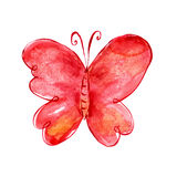 Painting butterfly. Watercolor butterfly. Cartoon insect. Floral background with butterfly. Floral birthday card Royalty Free Stock Image