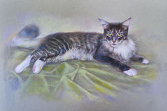Painting cat Royalty Free Stock Photography