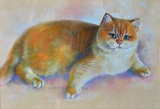 Painting cat british shorthair stock photo