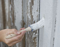 Painting. Closeup of a female hand painting on old hose Royalty Free Stock Photo