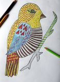 Painting colorful bird, Lithuania. Beautiful painted bird using many different colors stock photo