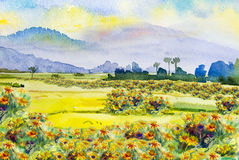 Painting colorful of daisy wildflower and colorful in the morning. Watercolor landscape original painting on paper colorful of daisy wildflower and  cornfield Stock Photo