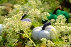 Painting of colorful pumpkins on white tiny flowers in nature scene stock photos