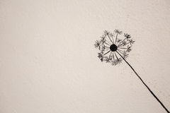 Painting of dandelion flower Royalty Free Stock Photo