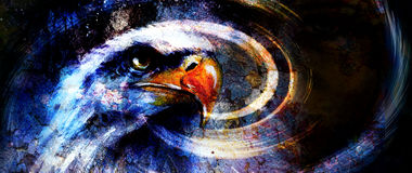 Painting  eagle on an abstract background, with crackle structure painting  eagle on an abstract background, with crackle structur Stock Image