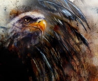 Painting of eagle on an abstract background, USA Symbols Freedom. Painting of eagle with black feathers on an abstract background , USA Symbols Freedom profile stock illustration