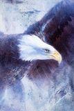 Painting eagle on abstract background, wings to fly, USA Symbols Freedom. Stock Photos