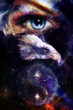 Painting eagle with woman eye on abstract background and Yin Yang Symbol in space with stars. Wings to fly, USA Symbols Freedom.  vector illustration