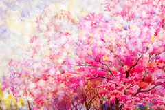 Painting floral composition Sakura or Wild himalayan cherry. Stock Photography